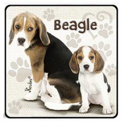Kutyás hűtőmágnes, Beagle