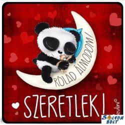 Szerelmes hűtőmágnes, Rólad álmodom, szeretlek, panda maci