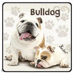 Kutyás hűtőmágnes, Bulldog