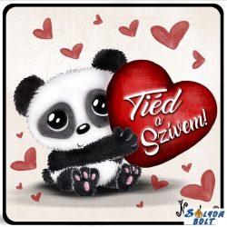 Szerelmes hűtőmágnes, Tied a szívem, panda maci
