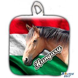 Edényfogó, Hungary, barna ló