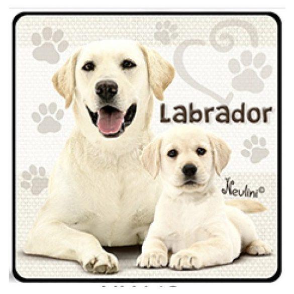 Kutyás hűtőmágnes, Labrador