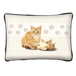 Macskás díszpárna, vörös macska