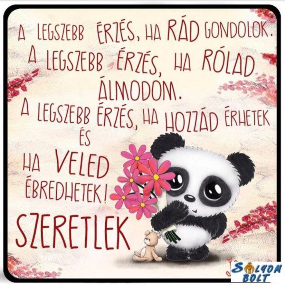 Szerelmes hűtőmágnes, A legszebb érzés, panda maci, szeretlek