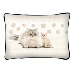Cicás díszpárna, fehér perzsa macska